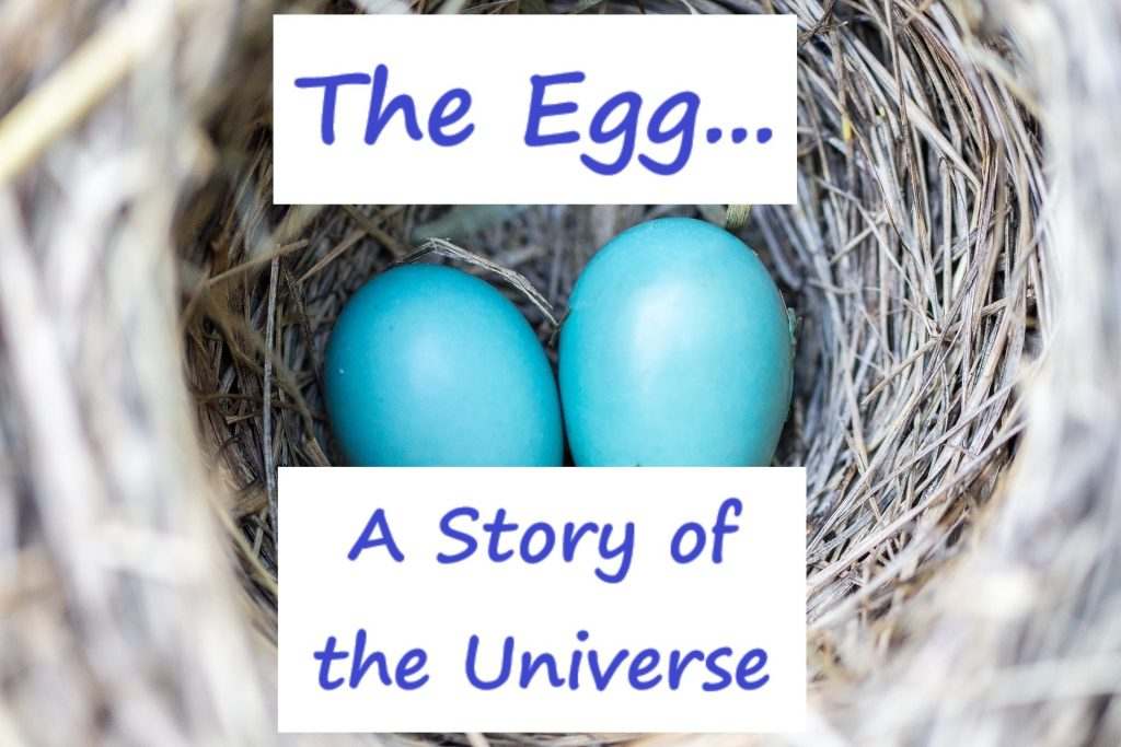 the egg a story of the universe